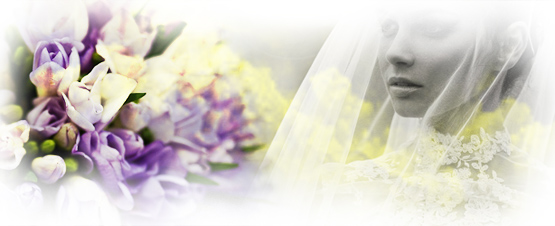 banner-wedding-speciale-eventi